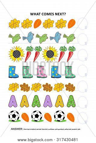 Autumn Themed Educational Logic Game Training Sequential Pattern Recognition Skills: What Comes Next