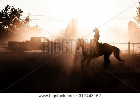 Sunset Silhouette Horse Back Rider Glow Equestrian Rodeo Dusty Arena Riding