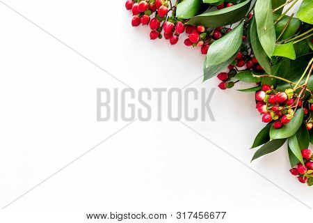 Background For Blog With Green Plant And Berries Frame On White Background Top View Space For Text