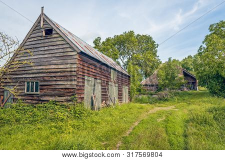 Old And Dilapidated Wooden Barns Among Wild Plants And Shrubs. The Photo Was Taken On A Sunny Day In