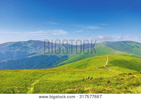 Wonderful Summer Mountain Landscape. Beautiful Green Sunny Scenery. Path Through Grassy Meadow On Ro