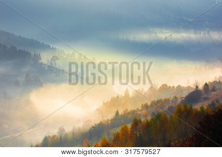 Glowing Fog In The Morning. Beautiful Scenery Of Nature Phenomenon In Autumn At Sunrise. Trees On Th