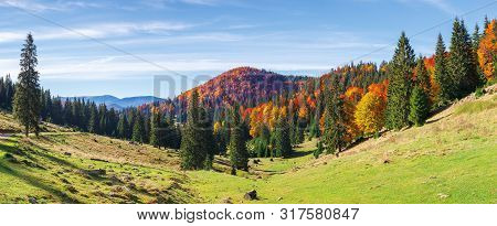 Apuseni Natural Park In Autumn. Amazing Morning Panorama Of Varasoaia Meadow, Bihor, Romania. Forest