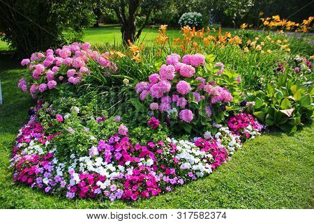 Elegant Flower Bed With Two Lush Blooming Hydrangeas Pink Flower Bed Decorate The Edges Of Small Flo