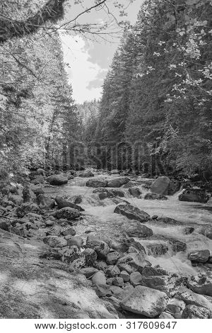 Black And White Image Of Nooksack Falls Waterfall Located In Whatcom County, Washington Off Mount Ba