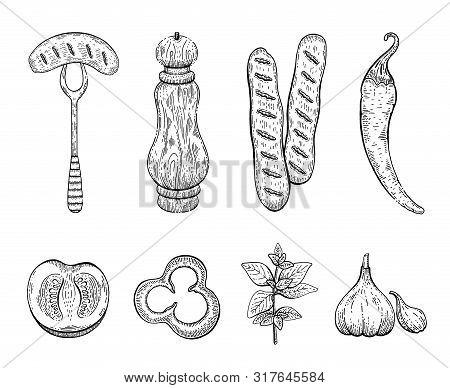 Sausage Spices Engraved Sketch Icon Set. Sausage On Fork, Pepper Mill, Bratwurst, Chilli Pepper, Tom