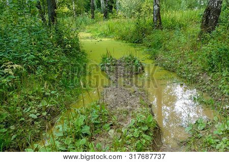 Dirty Road With Puddles In The Forest. Impassable Road In Russia