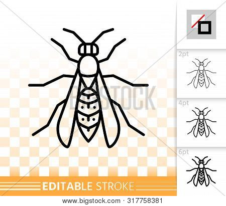 Wasp Thin Line Icon. Outline Web Sign Of Hornet. Bee Linear Pictogram With Different Stroke Width. S