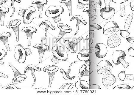Mushroom Seamless Pattern Set Hand Drawn Sketch Vector Illustration. Mushroom Shiitake, Fresh Organi