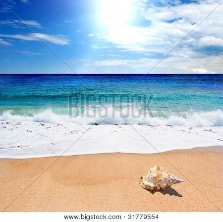 Sea landscape - sea, golden beach, the blue sky and white clouds