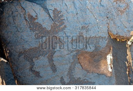 Ancient Cave Paintings. Petroglyphs In The Wild.