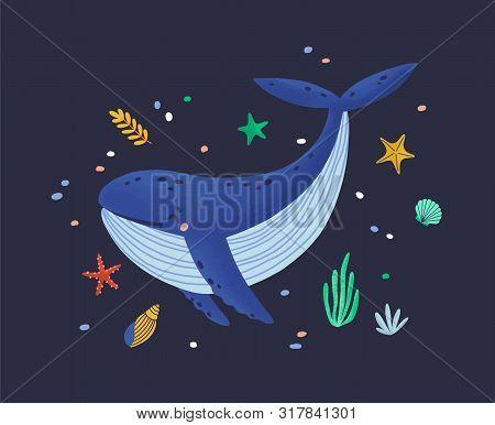 Happy Smiling Whale Isolated On Dark Background. Adorable Ocean Animal, Joyful Wild Marine Mammal, C