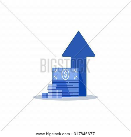 Income Increase, Financial Strategy, High Return On Investment, Budget Balance, Fund Raising, Long T