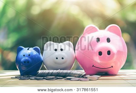 Coin With Piggy Bank, Three Pigs Placed On A Wooden Table, Concept Of Saving Or Investment. Planning