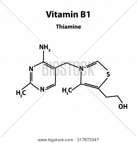 Vitamin B1. Thiamine Molecular Chemical Formula. Infographics. Illustration On Isolated Background.