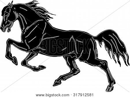 Vector Isolated Image, Drawing, Black Silhouette, Galloping Horse On White Background.