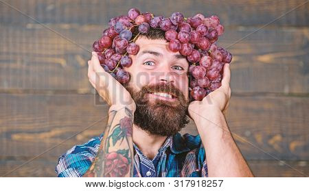 Winery Cheerful Worker. Farmer With Grapes. Winery Concept. Man With Beard Hold Bunch Of Grapes On H