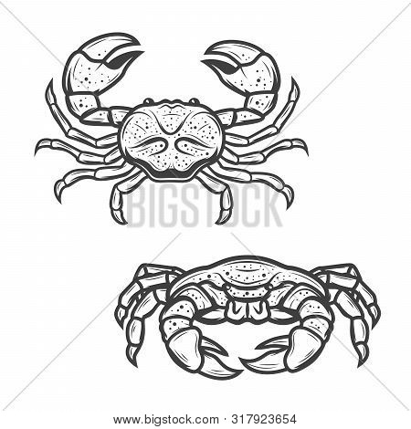 Crab Seafood Isolated Icon. Vector Marine Crustacean Symbol Of Sea Fishing Or Ocean Fisher Catch, Fi