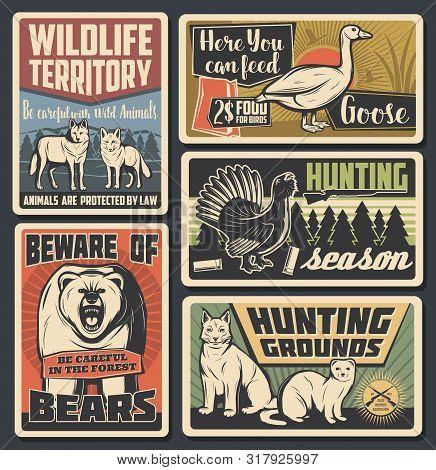 Hunting Open Season, Wild Animals Natural Park And Beware Of Bear Warning Vintage Posters. Vector Wi