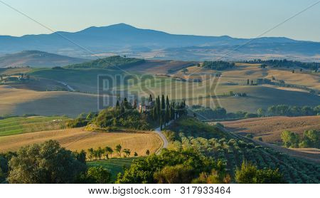 Tuscany summer valley early morning landscape
