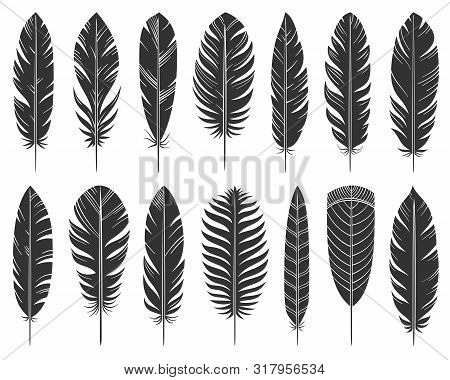 Feather Black Silhouette Set. Quill Symbol, Simple Shape Pictogram Collection. Pen, Bird Plume Doodl