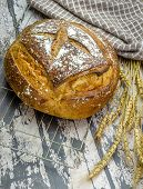 A vertical shot of a delicious freshly baked sourdough bread loaf on a baking wire tray. poster