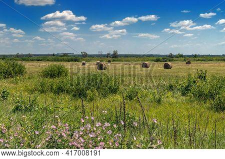 Green Field In Summer After Haymaking, Hay Rolls
