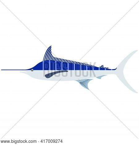 Atlantic Blue Marlin Sharp Nose Fish Vector Illustration