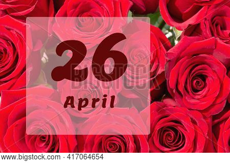 April 26th. Day Of 26 Month, Calendar Date. Natural Background Of Red Roses. A Bouquet Of Dark Red R