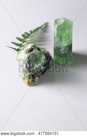 Healing Crystals And A Fern Branch. Natural Gemstones. Gemstones Are Full Of Healing Energy And Good