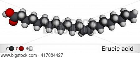 Erucic Acid Molecule. It Is Docosenoic Acid, Monounsaturated Omega-9 Fatty Acid. Molecular Model. 3d