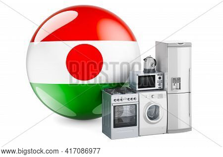 Kitchen And Household Appliances With Niger Flag. Production, Shopping And Delivery Of Home Applianc