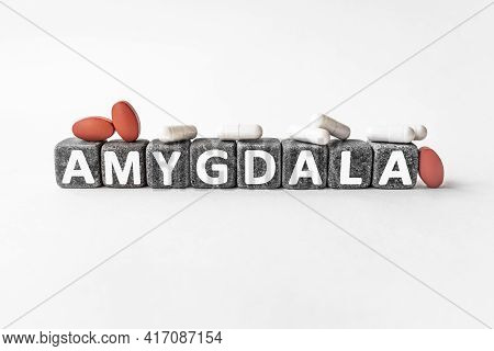 Amygdala The Word On Stone Cubes. Cubes Stand On A White Surface, Many White And Red Pills. Medicine