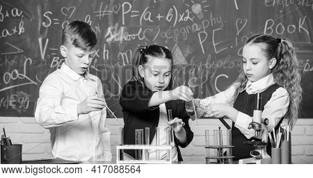 Test Tubes With Colorful Liquid Substances. Study Of Liquid States. Group School Pupils Study Chemic