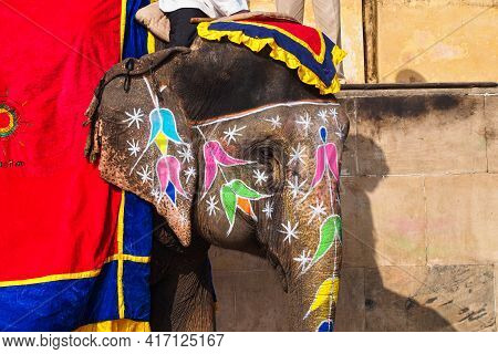 Jaipur, India - Jan 05, 2020: Decorated Elephant On The Road At Amber Fort In Jaipur, Rajasthan, Ind