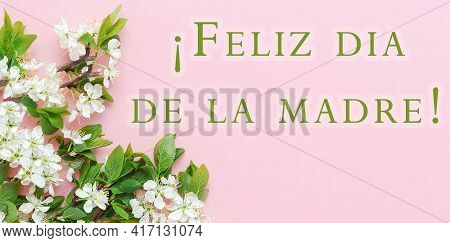 Pink Spring Banner With Green Twig Of Blossoming Cherry Or Apple Tree And Inscription Happy Mothers