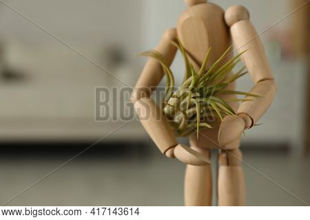 Wooden Human Figure With Beautiful Tillandsia Plant Indoors, Closeup And Space For Text. Home Decor