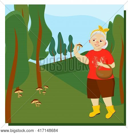 An Elderly Woman Picks Mushrooms In The Forest. Mushroomer. Mushroom Picking. Leisure Of Pensioners.