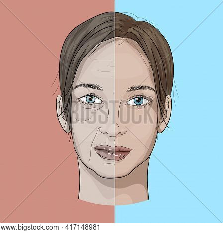 Illustration Of A Woman's Face In The Aging Process From Young To Old. Aging Face, Wrinkles, Loss Of