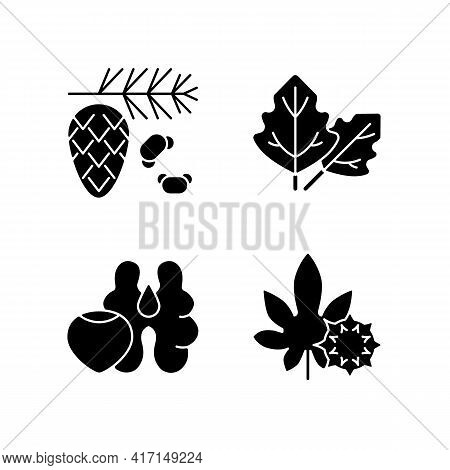 Cause Of Allergic Reaction Black Glyph Icons Set On White Space. Cedar And Pine Tree Pollen. Lambs Q