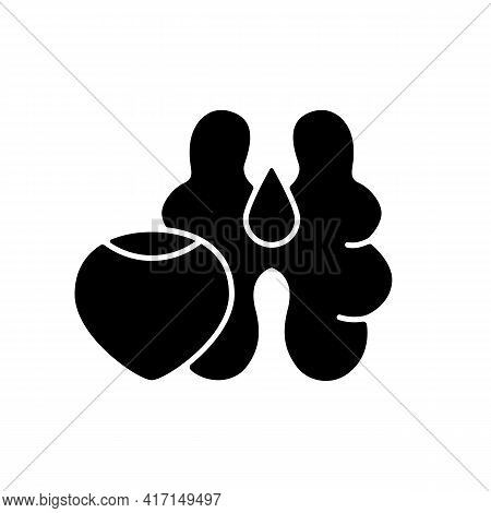Tree Nuts Black Glyph Icon. Walnut And Hazelnut As Common Allergen. Nutrient Food Ingredient. Fat, P