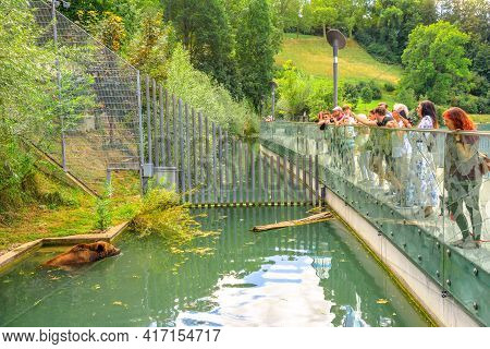 Bern, Switzerland - Aug 23, 2020: Tourists Looking A Bear Swimming In Inside The Bear Pit, One Of Th
