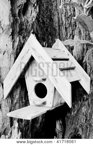 The Wooden House Of Birds