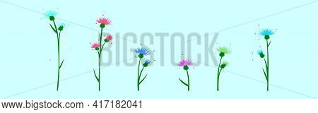 Set Of Thistle Cartoon Icon Design Template With Various Models. Modern Vector Illustration Isolated