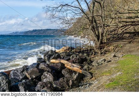 A View Of The Shoreling At Saltwater State Park In Des Moines, Washington.