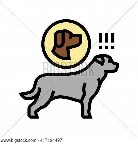 Dog Chasing Animal Color Icon Vector. Dog Chasing Animal Sign. Isolated Symbol Illustration