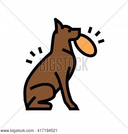 Playing With Stick, Ball, Disc Dog Color Icon Vector. Playing With Stick, Ball, Disc Dog Sign. Isola