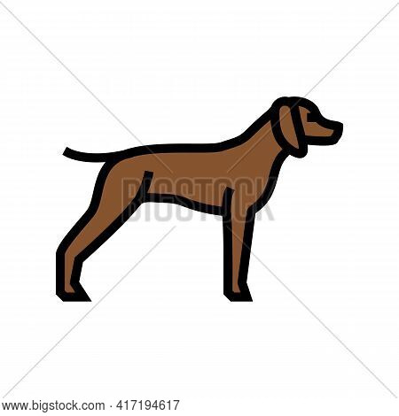 German Shrothaired Pointer Dog Color Icon Vector. German Shrothaired Pointer Dog Sign. Isolated Symb