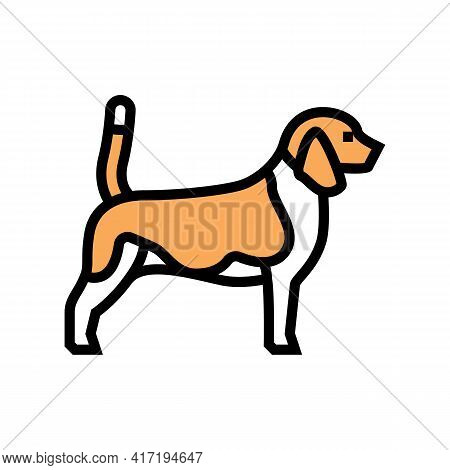 Beagle Dog Color Icon Vector. Beagle Dog Sign. Isolated Symbol Illustration