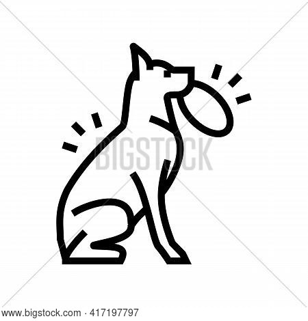 Playing With Stick, Ball, Disc Dog Line Icon Vector. Playing With Stick, Ball, Disc Dog Sign. Isolat